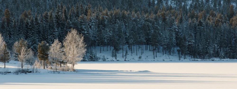Halvfari i vintersol